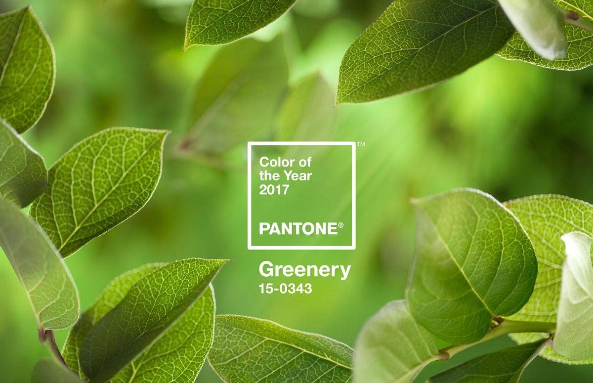 Vegetacióm en el color verde PANTONE de moda